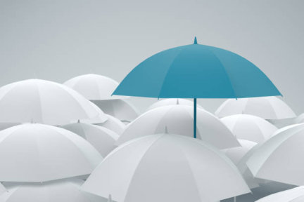 The Weird and Wonderful World of Insurance
